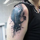 1-a-anim-oiseau-bras