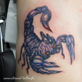 1-a-animaux-scorpion-meca
