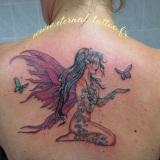 1-a-fantastique-fee-papillon-dos