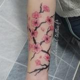 1-a-fleurs-branche-cerisier-1