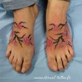 1-a-fleurs-cerisiers-pieds