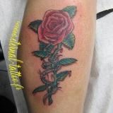 1-a-fleurs-rose-barbeles